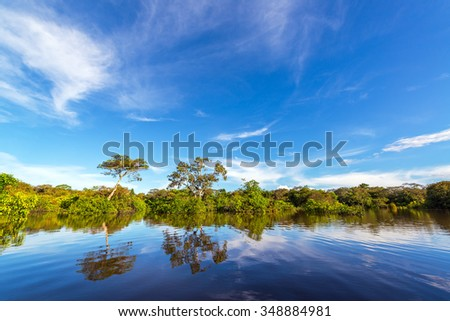 Trees and sky being reflected in the Javari river in the Amazon rain forest - stock photo