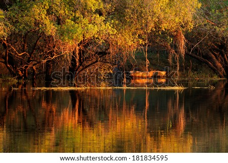 Trees and wooden boat reflected in water at sunset, Zambezi river, Namibia  - stock photo