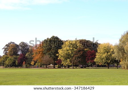 Trees changing color in Autumn in Worden Park, Leyland, Lancashire, - stock photo