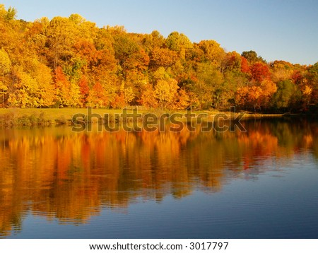 Trees changing colors in a park in New Jersey - stock photo