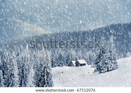 Trees covered with hoarfrost and snow in mountains. Mountain house - stock photo