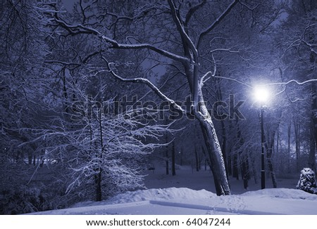 Trees covered with snow, dark sky and shining lantern. Park scene. Night shot. - stock photo