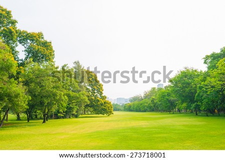 Trees in a park with green lawn, park under sunny light - stock photo