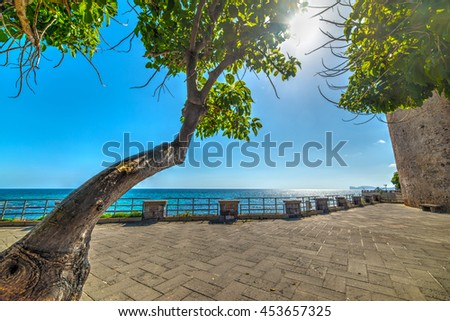 Trees in Alghero seafront, Italy - stock photo