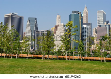 Trees in Brooklyn Bridge Park juxtaposed against modern Manhattan skyscrapers in New York City.