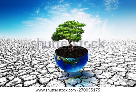 Trees in Earth glass ball pot on soil crack.Earth day concept.Elements of this image furnished by NASA.clipping path - stock photo