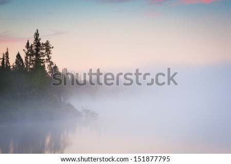 Trees in lake with morning fog - stock photo