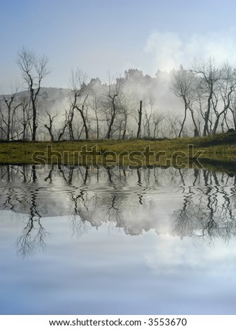 trees in the foog with lake reflection - stock photo