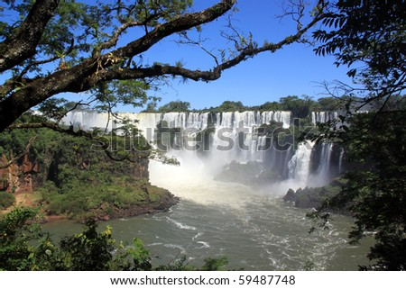 Trees in the forest and Iguazu waterfall in Argentina - stock photo