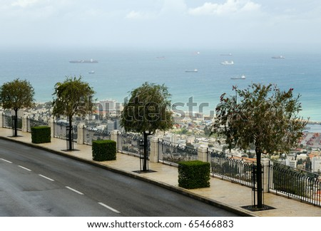 Trees on a street of Haifa City, Israel - stock photo