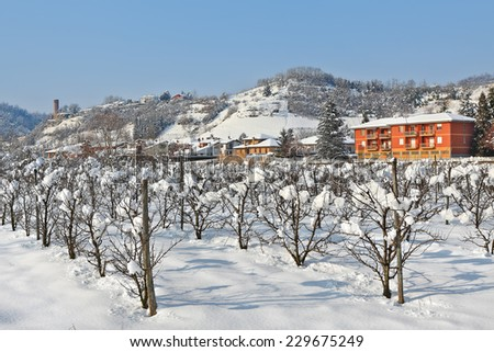 Trees on rural field covered with white snow as small village on background in Piedmont, Northern Italy. - stock photo
