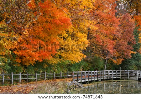 Trees Positively Ablaze With Color During Autumn In The Park, Walking Path, Fence And Pond, Sharon Woods, Southwestern Ohio - stock photo