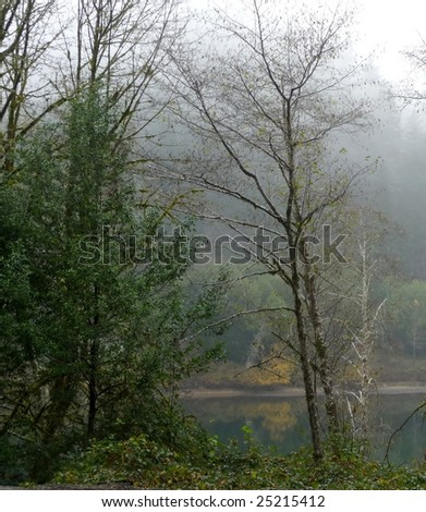 Trees reflect their leaves and color along a misty river - stock photo