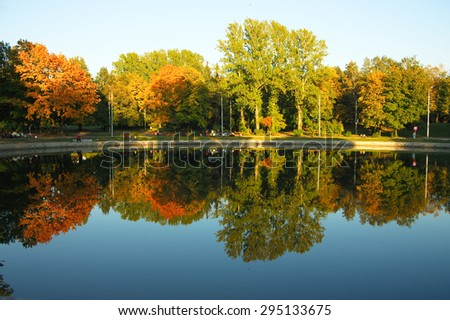 Trees reflected in a lake - stock photo