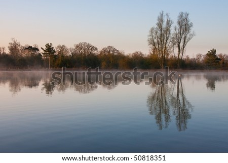 Trees reflected in lake at dawn