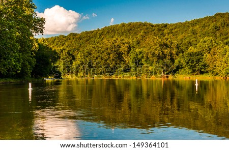 Trees reflecting in the Shenandoah River, seen from the Low Water Bridge, Virginia.