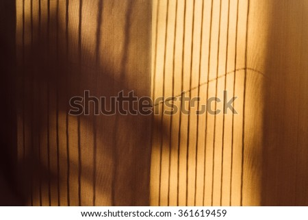 Trees shadow on the curtain vintage style, abstract background