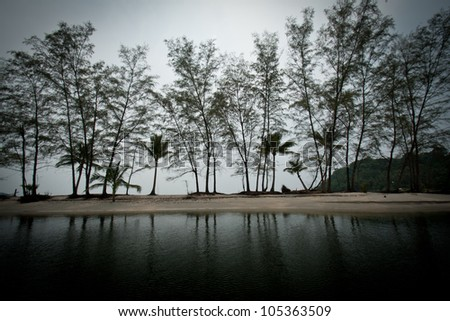 Trees Silhouette with Reflection in Water - stock photo