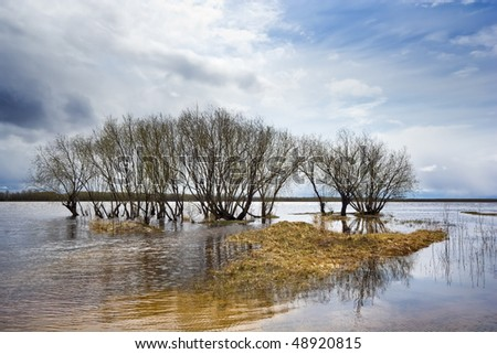 Trees standing in water during a spring high water, Siberia, Russia - stock photo