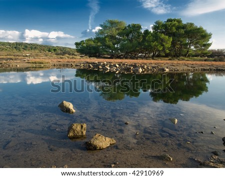 trees with reflection on the water under the bright sunny day, Adriatic coast - stock photo