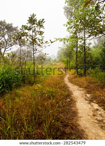 Trekking track on Khao Chang Phuak mountain at national park of Thailand