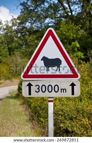 Triangular traffic sign warning of sheep on the road on a rural road background