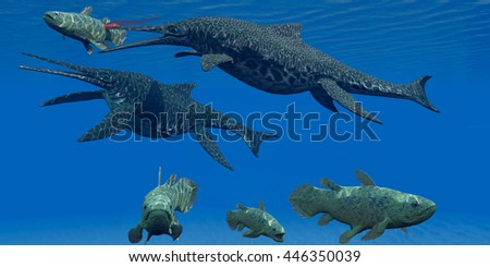 Triassic Shonisaurus Marine Reptile 3D Illustration - A Coelacanth fish becomes prey for a Shonisaurus Ichthyosaur marine reptile during the Triassic Period. - stock photo