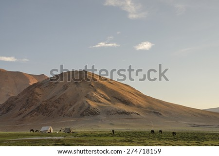 Tribal tents and horses among desert mountains in Ladakh - stock photo