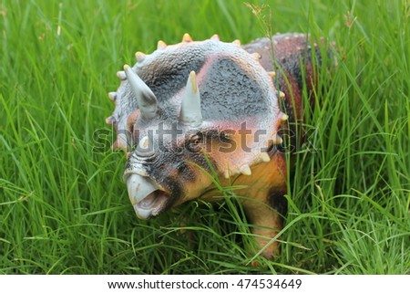 Triceratops on a green field