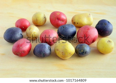 Tricolor mini potatoes in horizontal format and shot in natural light