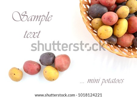 Tricolor mini potatoes in horizontal format and shot in natural light with room for text