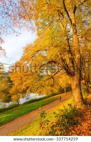TRIER, GERMANY - NOVEMBER 05, 2015: autumnal scene at the banks of the river Moselle with unidentified person. Trier lies within the important Moselle wine region and may be the oldest city in Germany