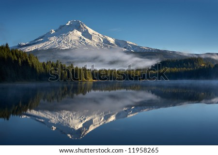 Trillium Reflection - stock photo