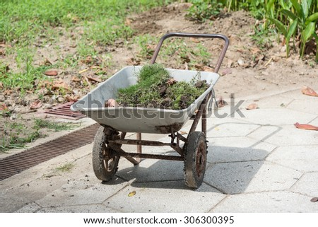 Trimming or cutting green grass on a gardening car