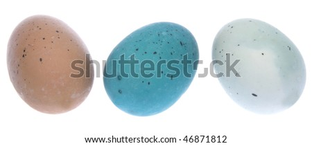 Trio of Easter Eggs isolated on white with a clipping path.