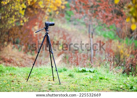Tripod with camera lens standing on autumn lawn in forest - stock photo