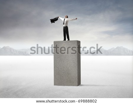 Triumphing businessman standing on a high cube - stock photo