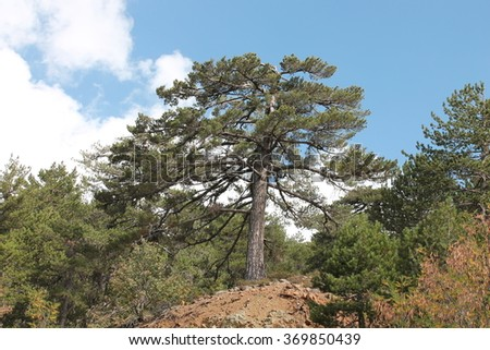 Troodos Mountains, Cyprus