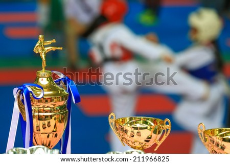 Trophy for Taekwondo competition with athlete fighting in background