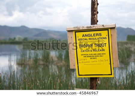 Trophy Trout - stock photo