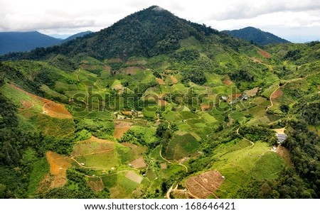 tropical agricultural valley on the mountain - stock photo