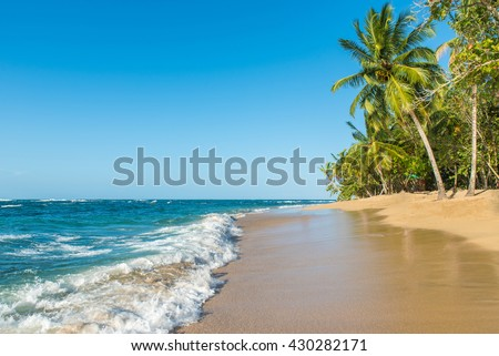 Tropical and paradise beach in Costa Rica, wild and beautiful caribbean coast - stock photo