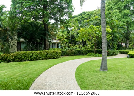Tropical area, outdoor lawn and road
