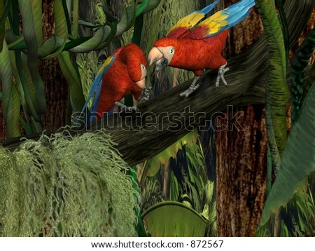 Tropical Argument - stock photo