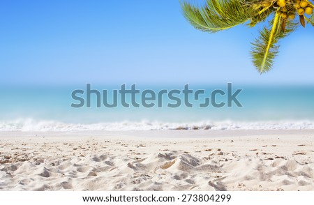 Tropical background with coconut palm trees, sandy beach, ocean and perfect sky. - stock photo