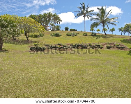 Tropical backyard - stock photo