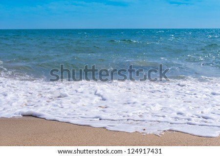 Tropical beach and sea for a backdrop.