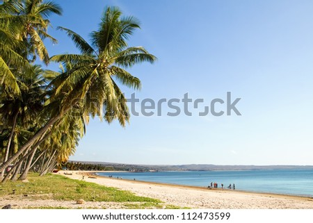 Tropical beach and sea in Tanzania, Africa