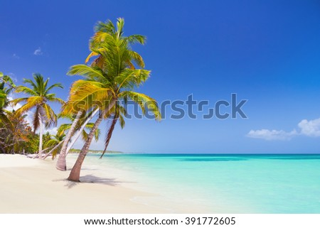 Tropical beach as a wild nature scenery in Punta Cana, Dominican Republic - stock photo