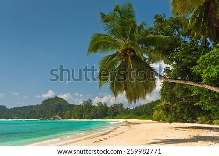 Tropical beach at Mahe island Seychelles. Horizontal shot - stock photo
